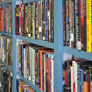 bookssteal3
